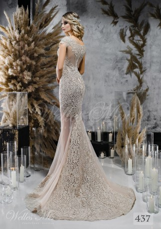 Coffee colored wedding dress with lace train on wholesale-2